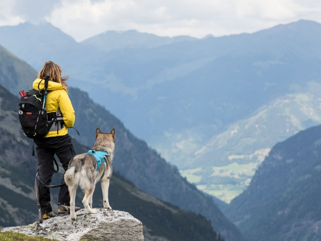 Hondenfotografie, Dog Walk Trail Oostenrijk